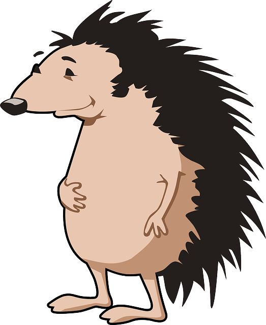 hedgehog-156172 640